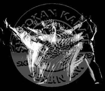 Rodokmeň Shotokan